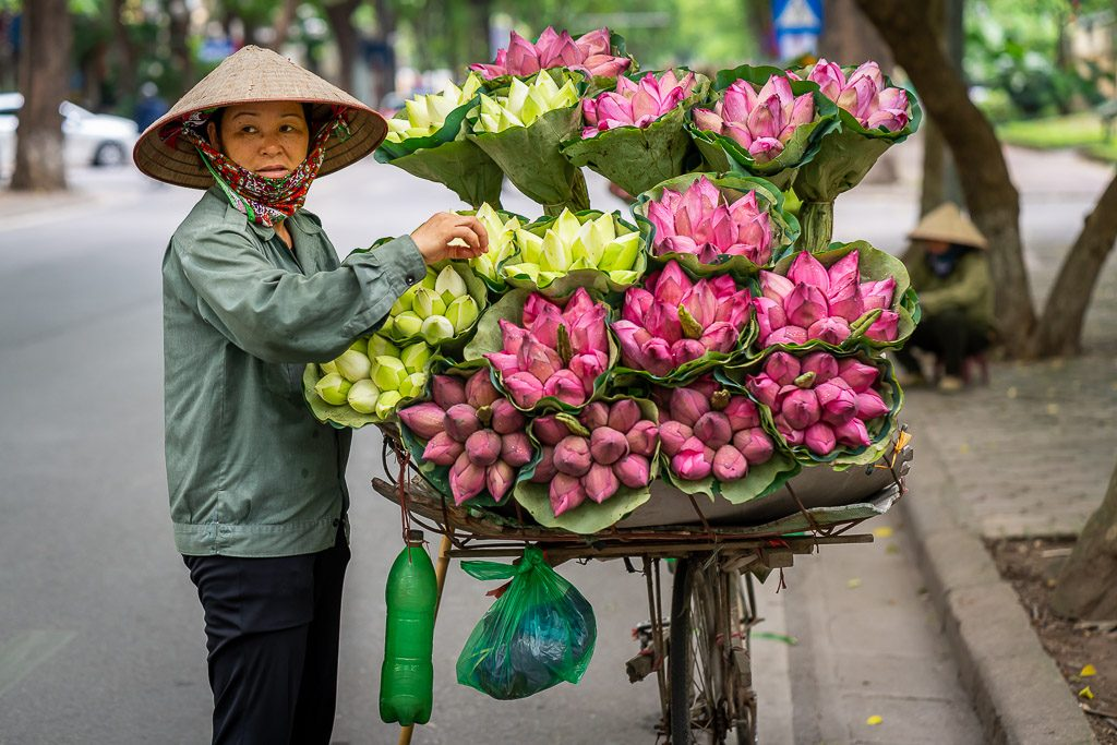 Vietnam street photography - flowers - offering - sale - water lily - portrait - bicycle - street - Hanoi - vietnam - street photography - CreArtPhoto