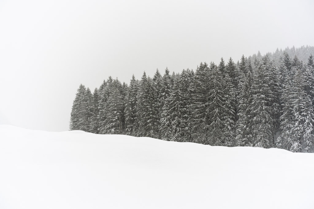 Ramsau bei Berchtesgaden - Himtersee - Germany - Berchtesgaden National Park - landscape - travel - photography - photographer - fir trees - forest - fresh snow - waves - CreArtPhoto - romanian photographer